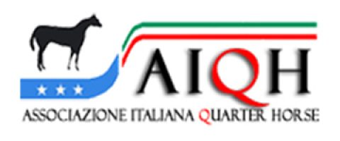 AIQH logo youviwa